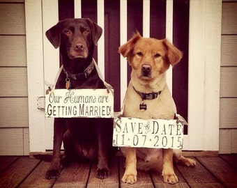 Our Humans are Getting Married Dog Signs | Save The Date Signs for DOGS | Photo Props | Signs for Dogs | Wedding Signs | Engagement Signs