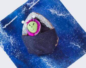 A Space Walnut Baby