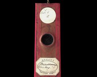REAL Antique Microscope Slide Pendant