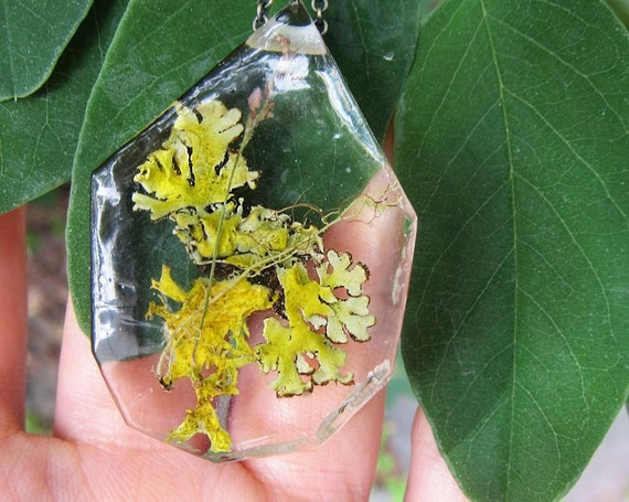 Lichen and Moss Terrarium Eco Resin Moss Necklace