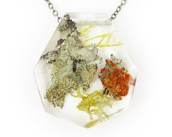 Lichen Terrarium Resin Necklace • Nature Necklace • Eco Resin Pendant Terrarium Jewelry • Moss Jewelry • Science Jewelry • Botanical Jewelry