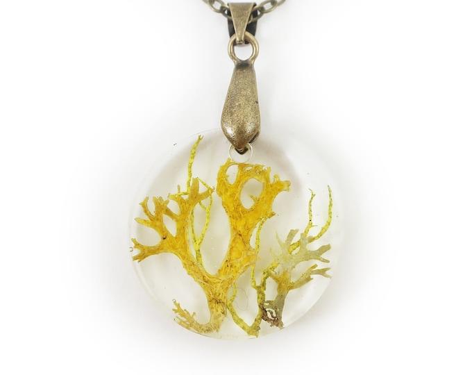 Mossy Lichen Circle Necklace