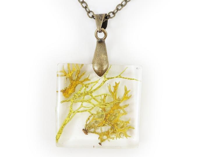 Mossy Lichen Square Necklace