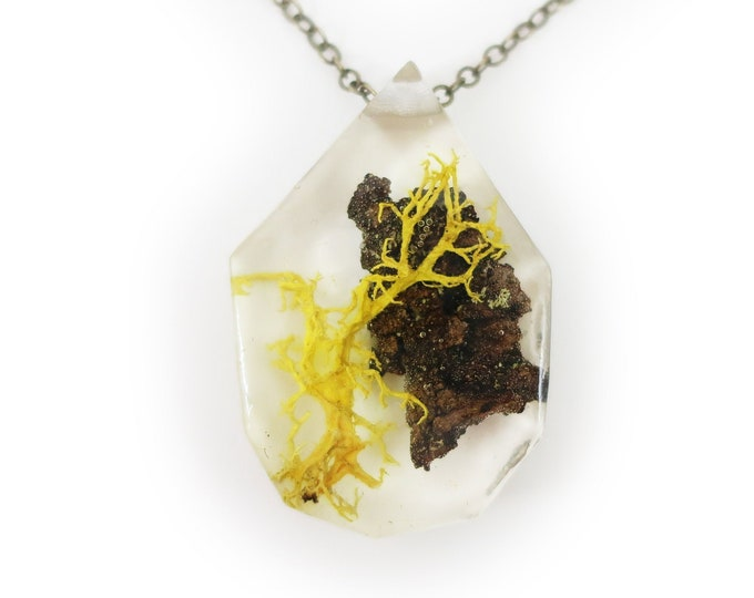 Twiggy Terrarium Eco Resin Moss Necklace