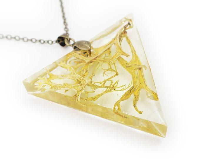 Large Lichen Triangle Terrarium Necklace