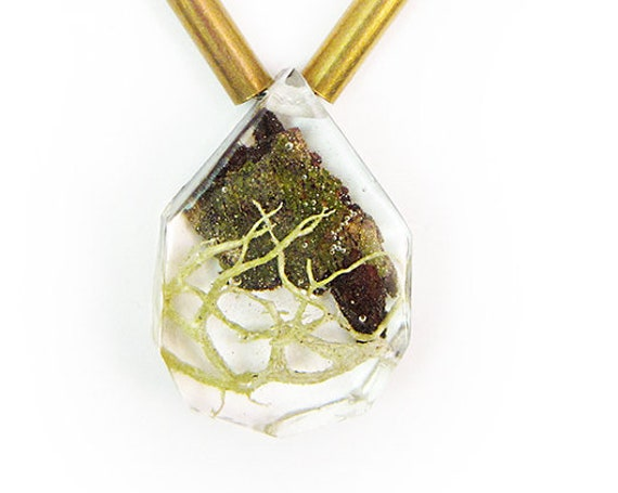 Bark Terrarium and Brass Necklace