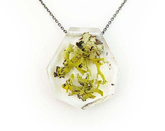 Lichen Terrarium Resin Necklace • Nature Necklace • Eco Resin Pendant Terrarium Jewelry • Moss Jewelry • Science Jewelry • Botanical Jewelry