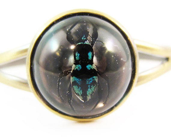 Exotic Jewel Beetle Cuff