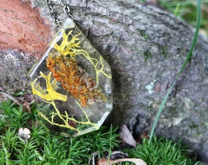 Terrarium Necklace, Lichen and Moss Pendant