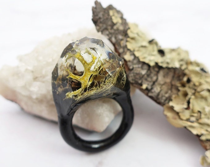 Terrarium Resin Ring | Size 8