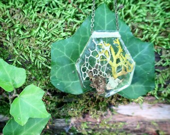 Twig Terrarium Resin Necklace