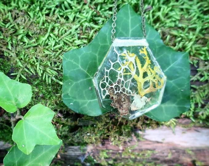 Twig Terrarium Resin Necklace