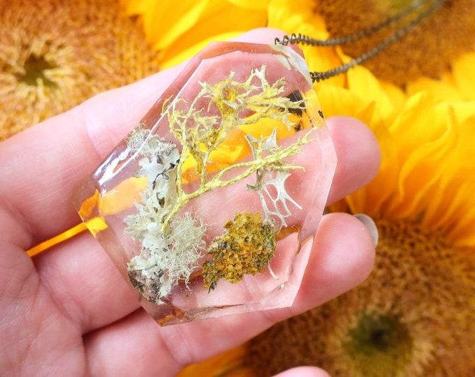 Geometric Terrarium Eco Resin Lichen Necklace