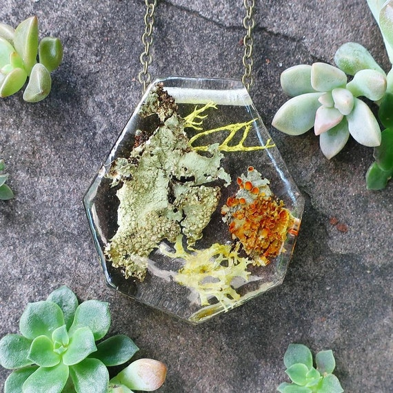 Lichen Terrarium Resin Geometric Necklace