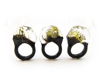 Terrarium Resin Ring, Size 7 US