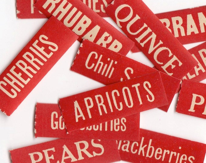10pcs ANTIQUE CANNING LABELS 1913 Tiny & Vibrant Limited Styles