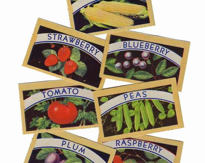 7pcs VINTAGE CANNING LABELS 1940s Gorgeous Color Set B