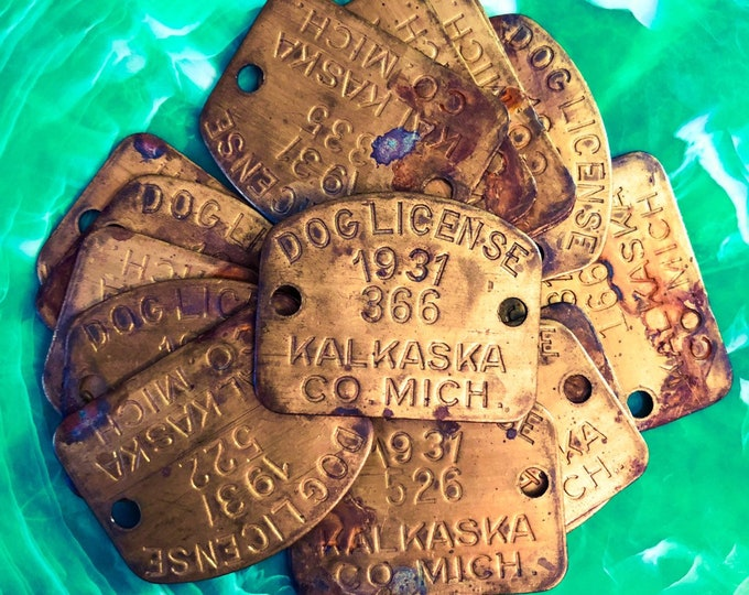1pc ANTIQUE DOG LICENSE Brass Dog Tag 1931 Vintage Dog License Altered Art Industrial Genuine Embellishments Kalkaska County Michigan