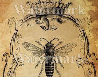 Reine des abeilles instantané numérique Télécharger imprimable Bee Art Print Collage Antique impression transfert coussin papier approvisionnement Sauvons les abeilles