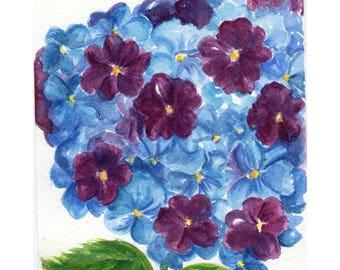 Purple, Blue Hydrangeas watercolor painting original 5 x 7 flower painting watercolor art, small watercolor flower art, hydrangea decor