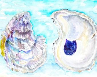 Oyster Shells, Seashells