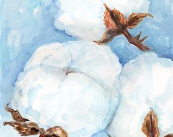 Cotton watercolor painting, cotton boll  original, Cotton plant art 8 x 10