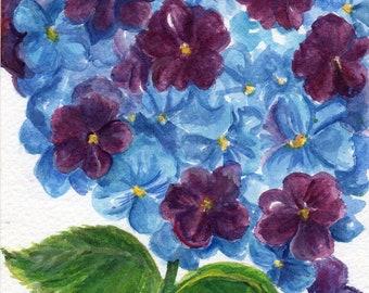 Purple, Blue Hydrangeas watercolor painting original 5x7, flower painting, small watercolor flower art, hydrangea decor