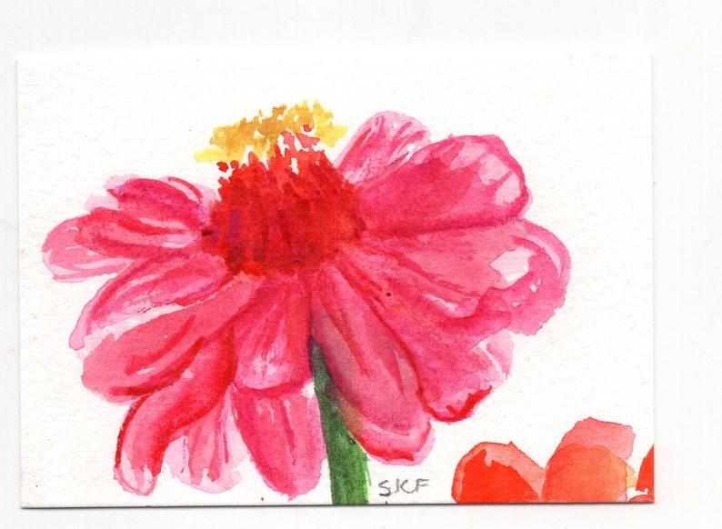 Pink Zinnia Watercolor Painting ACEO Original image 0