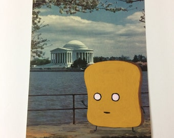 Mr Toast at the Jefferson Memorial