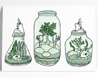 Bottle Garden Print