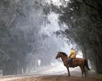0ba441bd7 Misty Morning - Hawaiian Paniolo, hawaii, big island, parker ranch, cowboy,  mist, rain, photography, landscape, wall art, canvas art