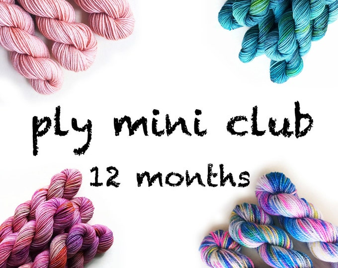 Featured listing image: Hand Dyed Yarn Mini Skein Club 12 months. Customizable monthly yarn club subscription. Gift for Knitters, Gift for Crafters. PLY Yarn Club!