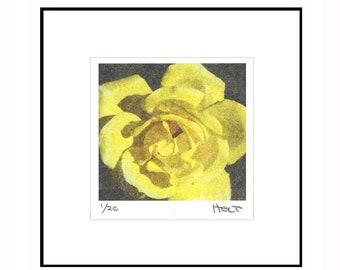 Yellow rose photo transfer print, hand made wedding, anniversary or Valentine's Day gift