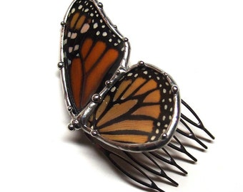 Real Monarch Butterfly Hair Comb