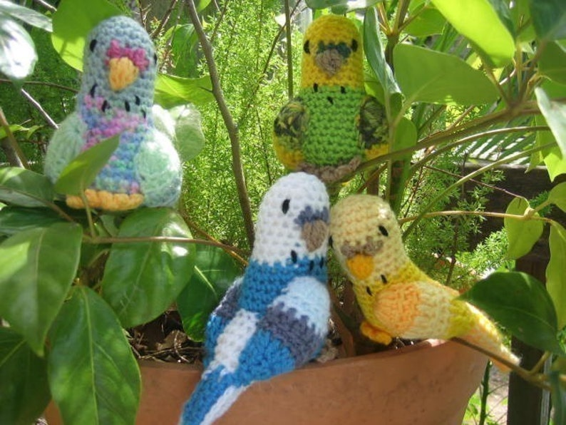 f91cdf9ea4 Budgerigars budgie crochet pattern Australian Native Birds