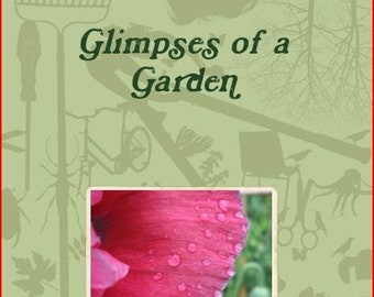 Glimpses of a Garden