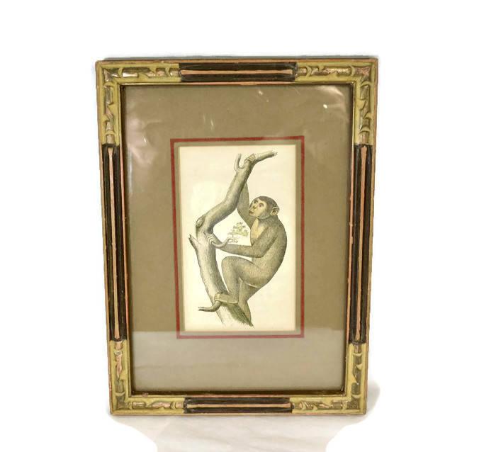 Image 9 of Antique Framed Chimpanzee Art Print