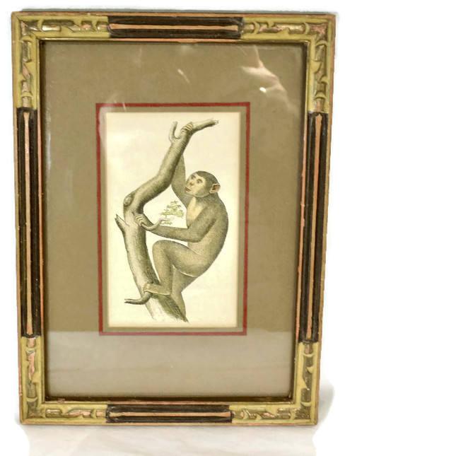 Image 3 of Antique Framed Chimpanzee Art Print