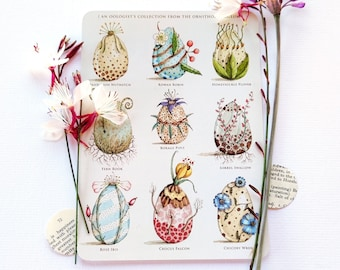 The Ornithoflorigeum - Postcard Set