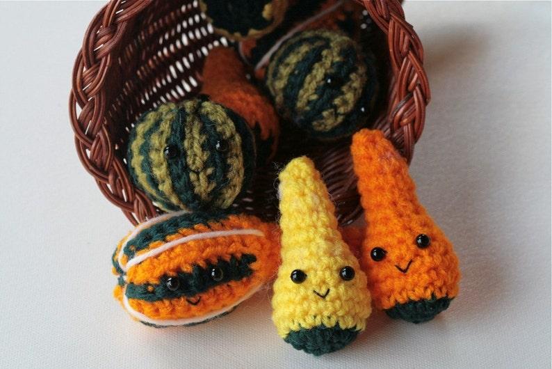 Autumn Gourds Crochet PATTERNS image 0