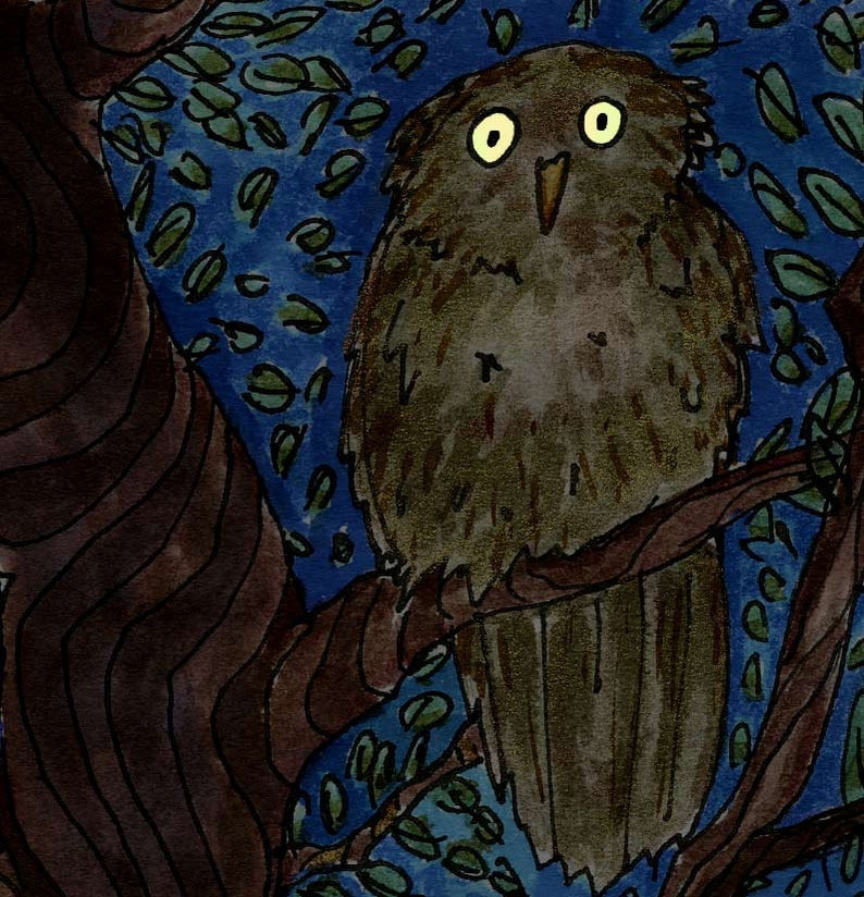 Glows in the dark  Owl Eyes  8 x 10 matted image 0