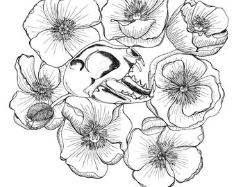 Cat Skull and Poppies Downloadable Adult Coloring Page A4