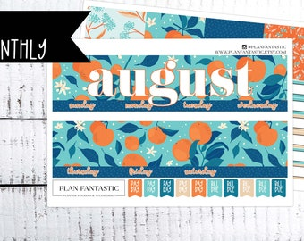 August Monthly Planner Sticker Kit - Summer Month on 2 Pages - for use with ERIN CONDREN LIFEPLANNER™