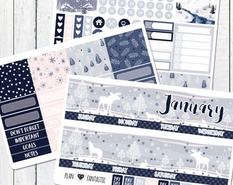 January Monthly Sticker Kit - Monthly Calendar Planner Stickers for use with ERIN CONDREN LIFEPLANNER™ or Recollections Planner
