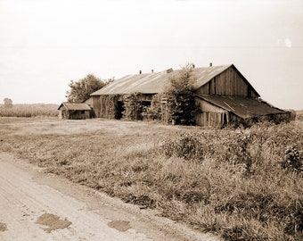 Sepia Colored Country Barn