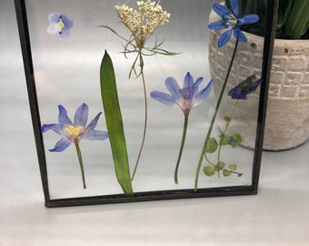 Real Pressed Flowers, Wild Flowers, Stained Glass Wall Hanging, Flower, Floral Gift, Wall Hanging, Purple Flowers, Blue Flowers, Queen Ann