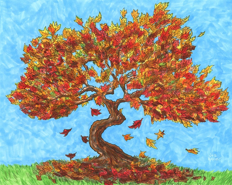 Maple Tree Drawing