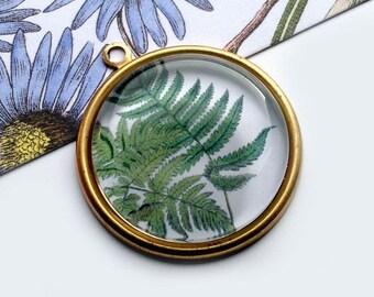 Botanical Illustrated Fern Pendant 33mm round glass & vintage brass, tropical plants