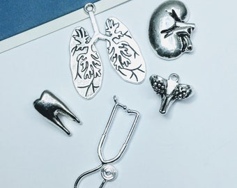 5pc silver anatomical charms set, body parts / anatomy; lungs, pelvis, tooth, kidney, stethoscope, doctor theme