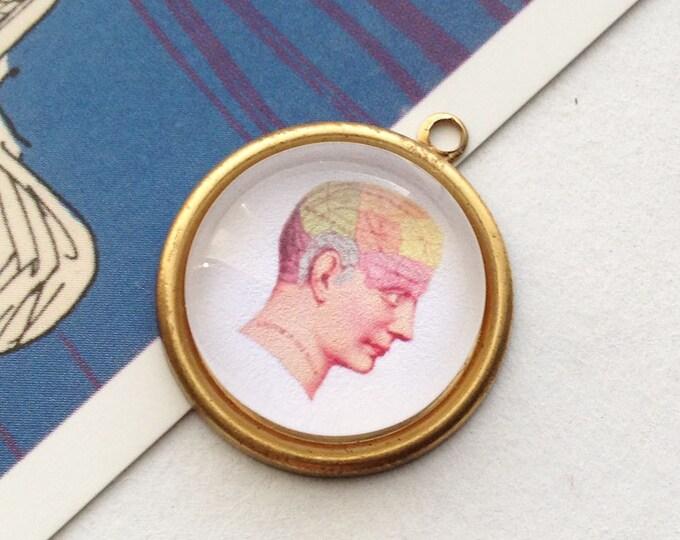 Round brass Phrenology charm 25mm vintage illustration, brain charm